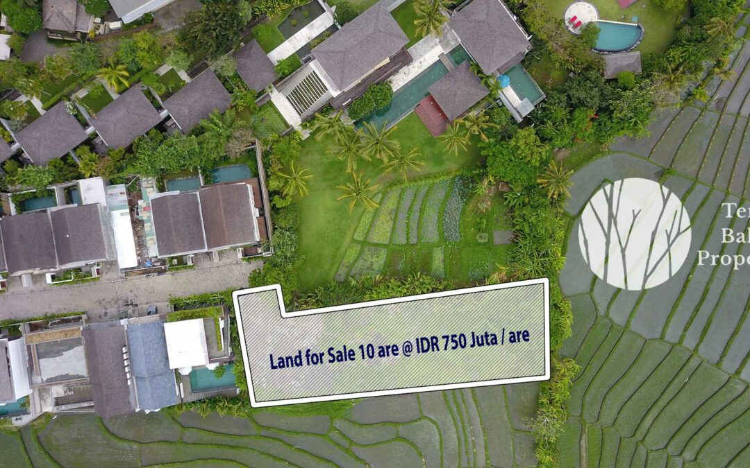 Bali Land for Sale – 750 million IDR per are Freehold