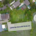 Bali Land for Sale Freehold Canggu