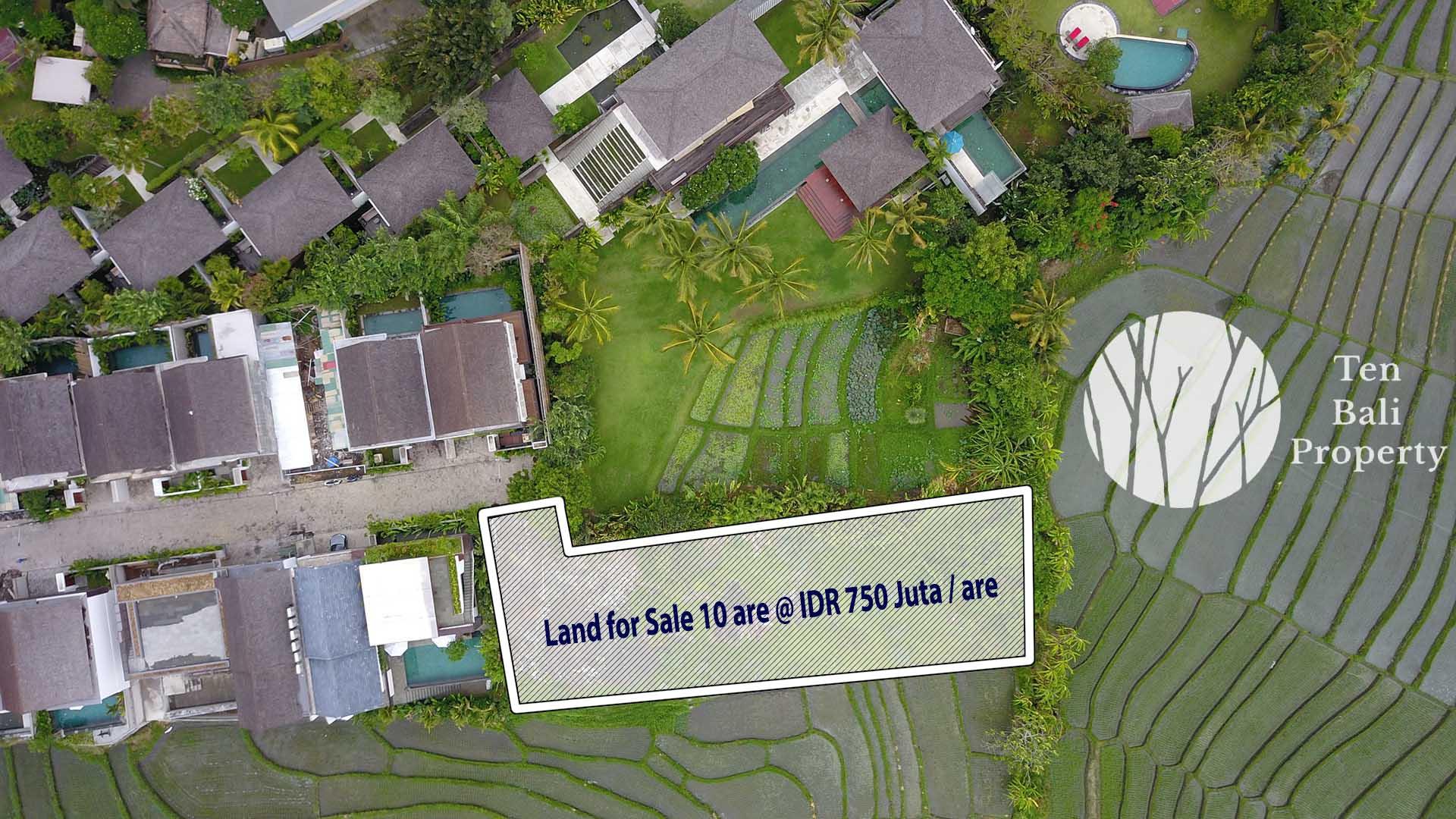 Bali Land for Sale Freehold Canggu